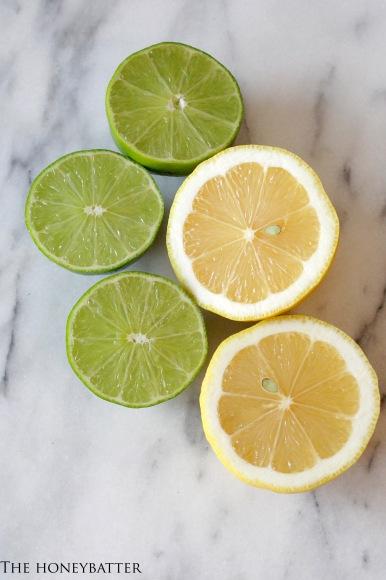 lemonlimeceviche